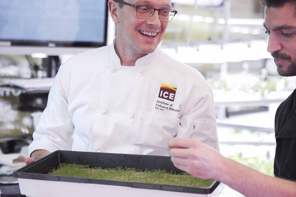 The Institute of Culinary Education names award-winning Director of Sustainability